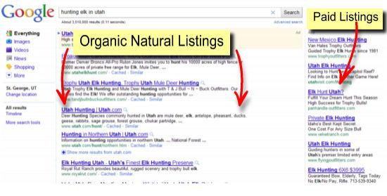 google page rankings